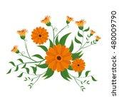 blossom floral natural  | Shutterstock .eps vector #480009790