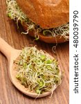 Small photo of Fresh alfalfa and radish sprouts on wooden spoon and baked wholemeal bread roll lying on wooden surface, concept of healthy lifestyle diet food and nutrition