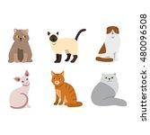cat breeds cute pet animal set... | Shutterstock .eps vector #480096508