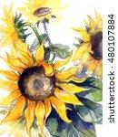 watercolor flowers   yellow... | Shutterstock . vector #480107884