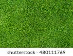 green grass natural  background ... | Shutterstock . vector #480111769