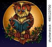 vector illustration of owl...   Shutterstock .eps vector #480123700