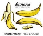 vector set of  yellow bananas.... | Shutterstock .eps vector #480170050