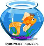 gold fish in aquarium on white... | Shutterstock .eps vector #48021271