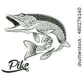 monochrome illustration of... | Shutterstock .eps vector #480276160