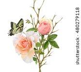illustration of beautiful... | Shutterstock . vector #480279118