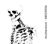 illustrated skeleton | Shutterstock . vector #48029056