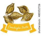 conchiglie pasta colorful... | Shutterstock .eps vector #480352726