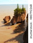 Kayakers At Hopewell Rocks In...