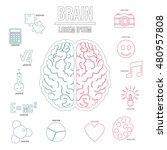 human brain infographics set in ... | Shutterstock .eps vector #480957808