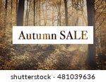 autumn sale  signboard on the... | Shutterstock . vector #481039636