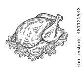grilled roasted chicken  turkey ... | Shutterstock .eps vector #481125943