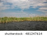 landscape in danube delta ... | Shutterstock . vector #481247614