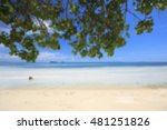 blurred beautiful tropical... | Shutterstock . vector #481251826