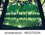 a high quality background of... | Shutterstock .eps vector #481373254