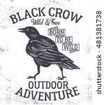 Black Crow. Hand Drawn Ink Cro...