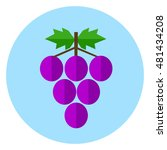 vector icon of grapes | Shutterstock .eps vector #481434208