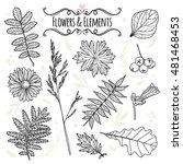 set of illustrations of plants. ... | Shutterstock .eps vector #481468453