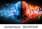 left and right brain functions  ... | Shutterstock . vector #481499200