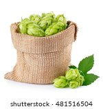 Fresh Green Hops In Burlap Bag...