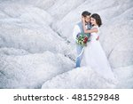 bride and groom at their... | Shutterstock . vector #481529848