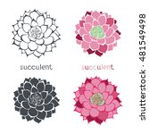 graphic set with succulents ... | Shutterstock .eps vector #481549498
