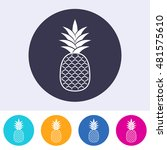 Single Vector Pineapple Icon O...
