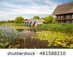 landscape in danube delta ... | Shutterstock . vector #481588210