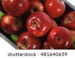 fresh red apples in vintage... | Shutterstock . vector #481640659