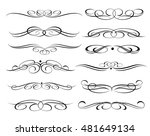 calligraphic elements design... | Shutterstock .eps vector #481649134