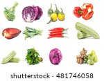 collection of vegetable isolate ... | Shutterstock . vector #481746058