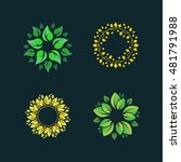 floral logo template. organic... | Shutterstock .eps vector #481791988