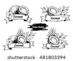 set of labels with coconut.... | Shutterstock .eps vector #481803394