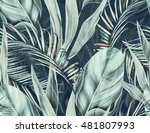 seamless tropical flower  plant ... | Shutterstock . vector #481807993
