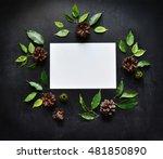 congratulations background.... | Shutterstock . vector #481850890