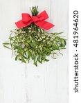 christmas mistletoe decoration... | Shutterstock . vector #481964620