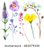 wildflowers in a watercolor... | Shutterstock . vector #482079334