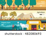 plant cultivation agriculture... | Shutterstock .eps vector #482080693
