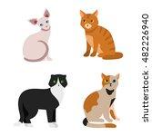 cat breeds cute pet animal set... | Shutterstock .eps vector #482226940