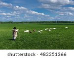 shepherd and herd of goats on a ... | Shutterstock . vector #482251366