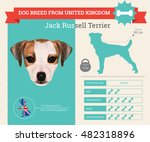 jack russell terrier dog breed...   Shutterstock .eps vector #482318896