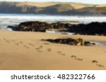 footprints in the sand on...   Shutterstock . vector #482322766