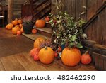 Bright Ripe Pumpkins On The...