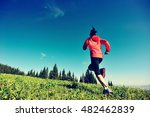 fitness young woman trail... | Shutterstock . vector #482462839