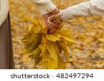 Autumn Leaves.mother And...
