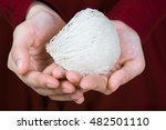 edible bird's nest on an asian... | Shutterstock . vector #482501110
