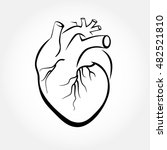 human heart icon vector.... | Shutterstock .eps vector #482521810