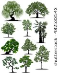 beautiful tree on a white... | Shutterstock .eps vector #482533543