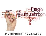 Magic Mushroom Word Cloud...