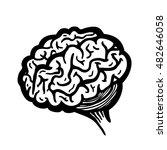 painted brain  vector... | Shutterstock .eps vector #482646058